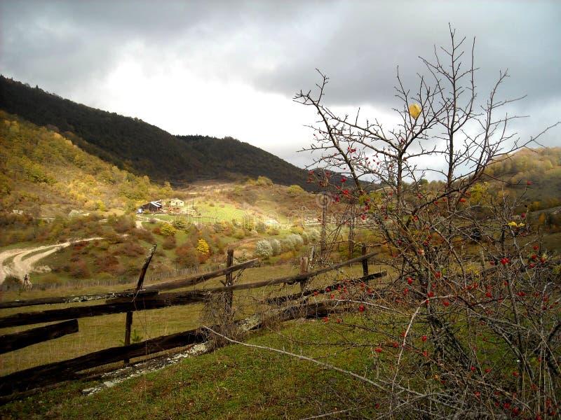 Herbst bei Racha stockfotos