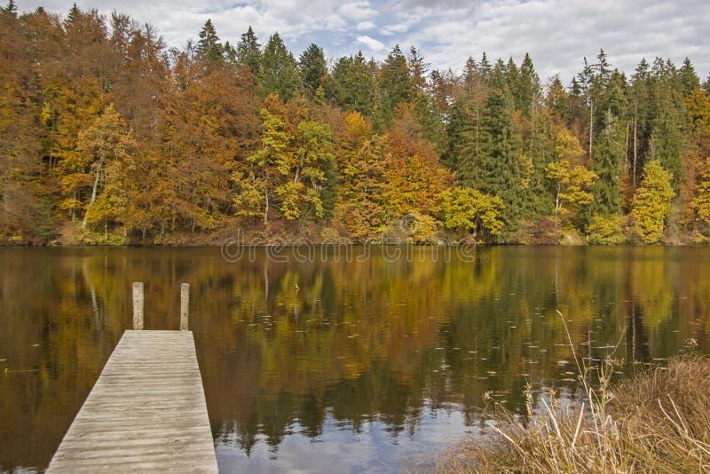 Herbst beim Hackensee lizenzfreie stockfotografie