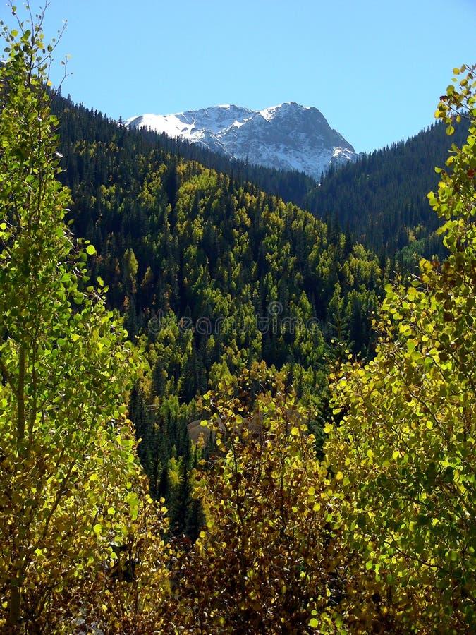 Herbst-Berg stockfotos