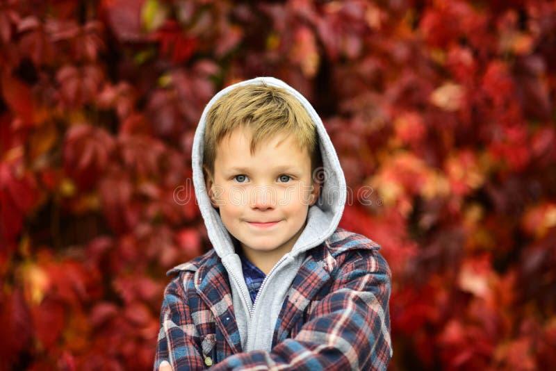 Herbst beträgt Zeit für zurück zu Schule Kleiner Schüler Kleines Kind genießen Herbstsaison Entzückendes Kind auf Herbst stockbild