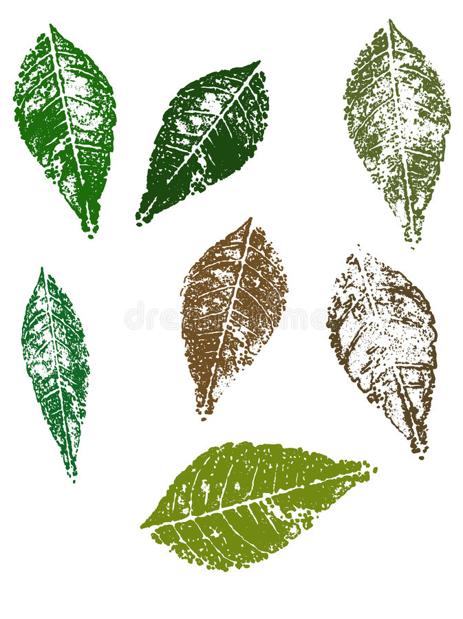 Herbst-Blätter vektor abbildung
