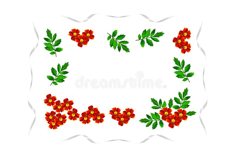 Herbst blüht Ringelblumen vektor abbildung