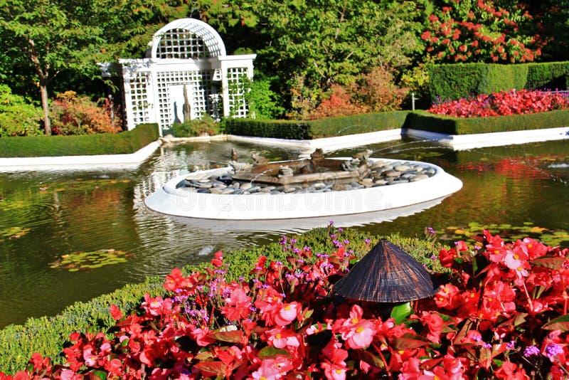 Herbst, Blume in Butchart-Garten, Victoria, Vancouver Island, Briten Kolumbien, Kanada lizenzfreie stockfotos