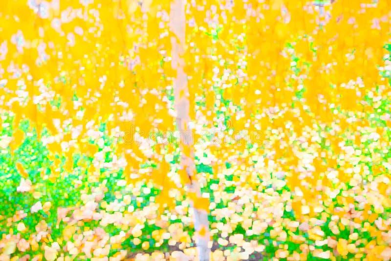 Herbst blured Hintergrund lizenzfreie stockfotos