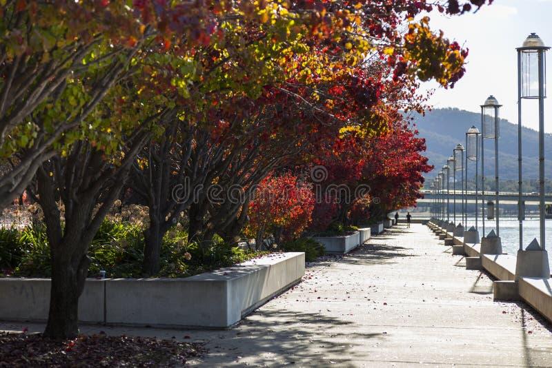 Herbst. Burley Griffin Lake. Canberra. Australien lizenzfreie stockbilder