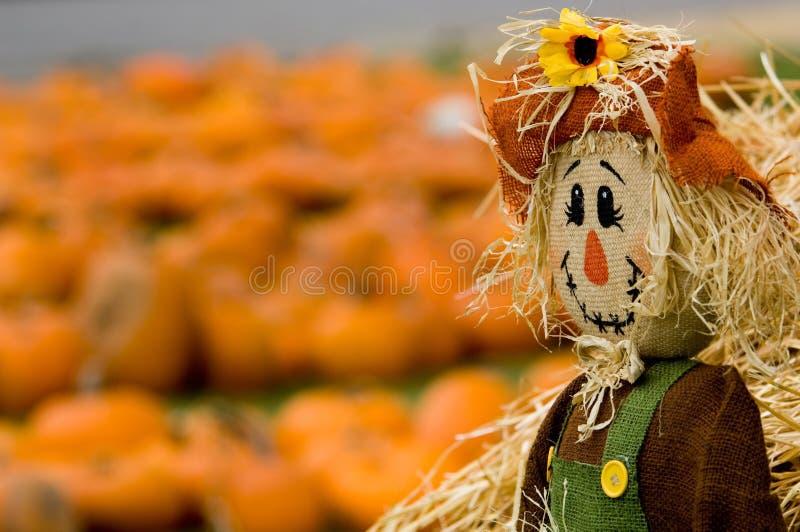 Herbst-Dekoration lizenzfreie stockfotos