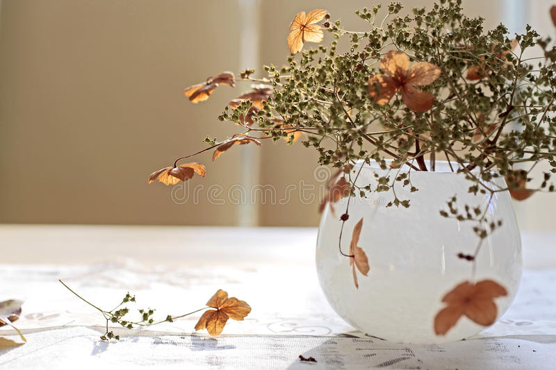 Herbst-Dekoration stockfoto