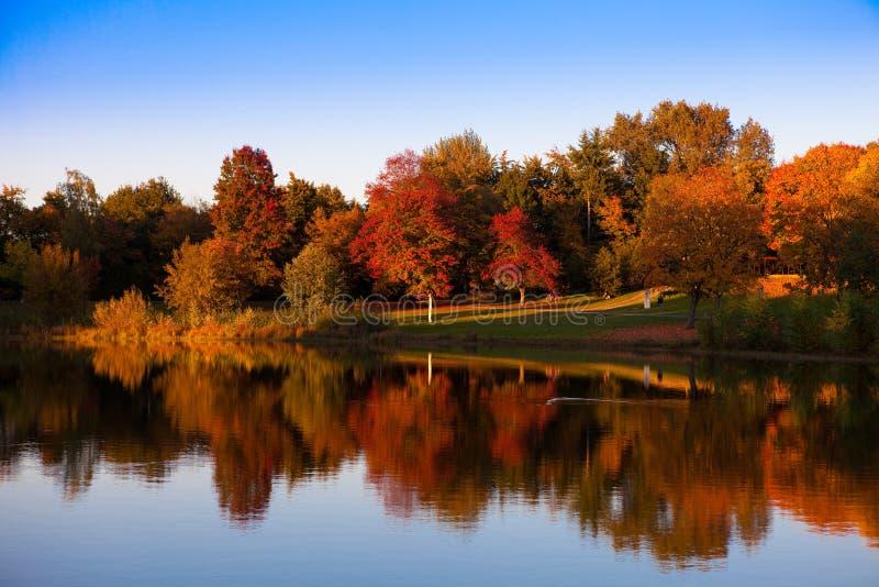 Herbst in dem See lizenzfreies stockbild