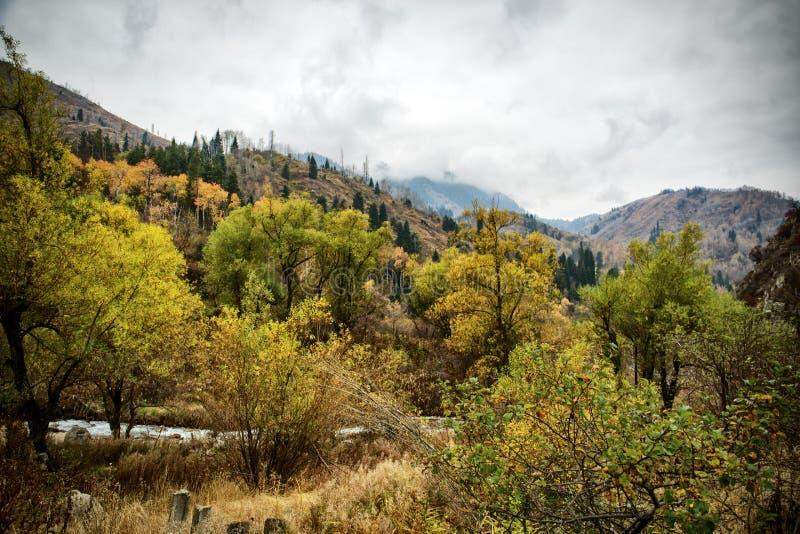 Herbst in den Bergen stockfotografie