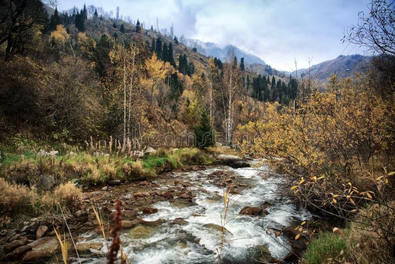 Herbst in den Bergen stockbilder