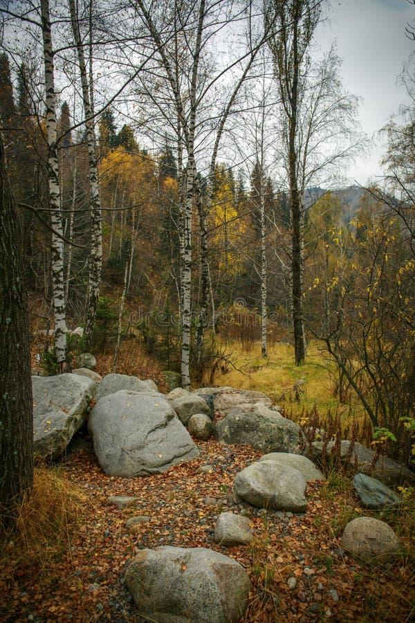 Herbst in den Bergen stockfoto