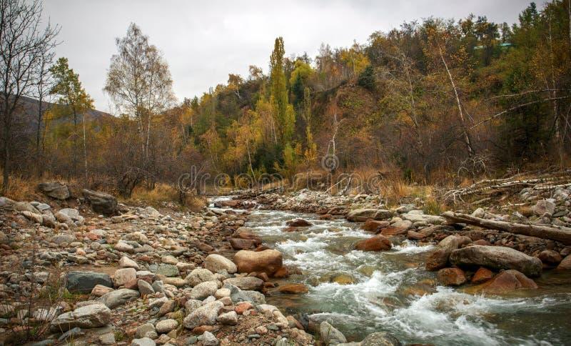 Herbst in den Bergen stockfotos