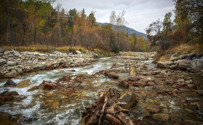Herbst in den Bergen lizenzfreies stockfoto