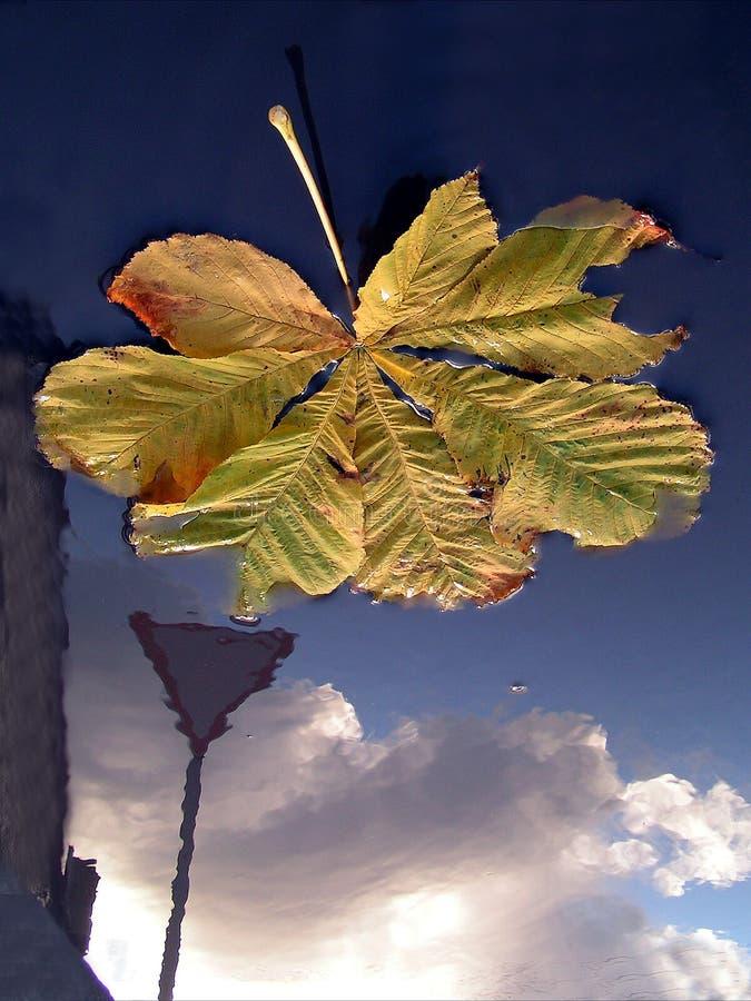 Herbst In Den Straßen Stockfotos