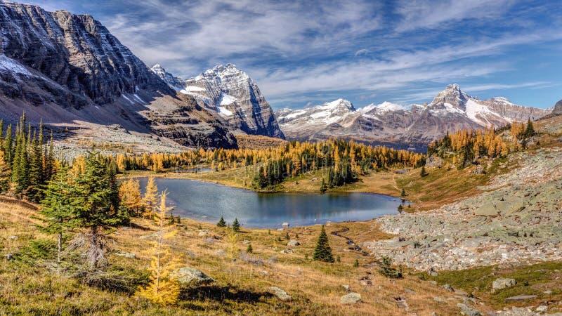Herbst an der Opabin-Hochebene lizenzfreie stockfotos