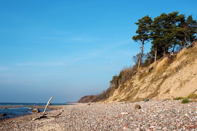 Herbst in der Ostseeküste von Litauen stockbild
