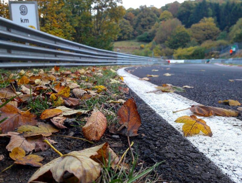 Herbst der Rennbahn lizenzfreies stockfoto