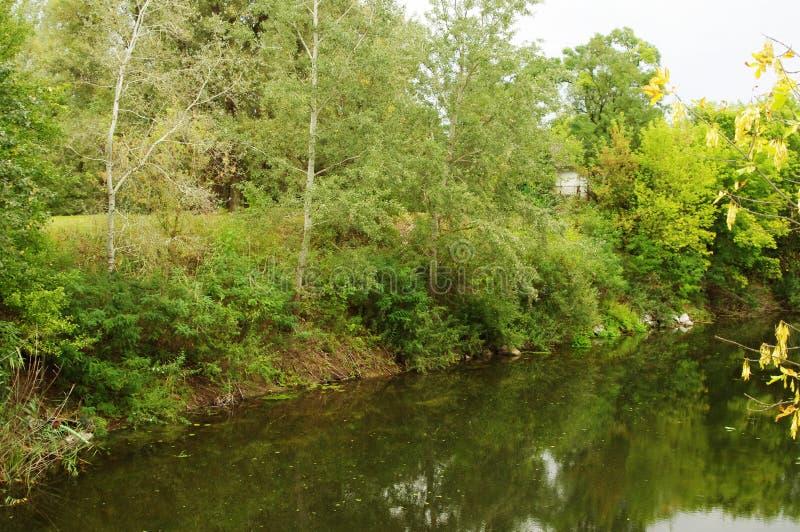 Herbst, der Waldfluß stockbilder