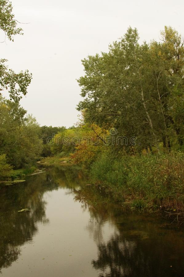 Herbst, der Waldfluß lizenzfreie stockfotos