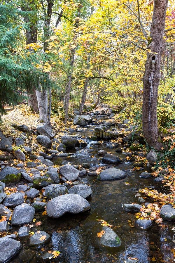 Herbst durch The Creek lizenzfreie stockfotografie