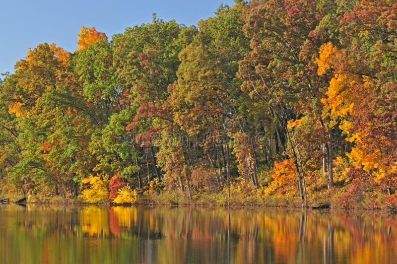 Herbst, Eagle See lizenzfreie stockbilder