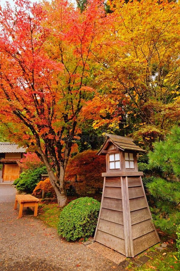 Herbst in einem Park lizenzfreies stockbild