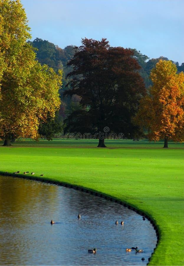 Herbst in England stockfotos