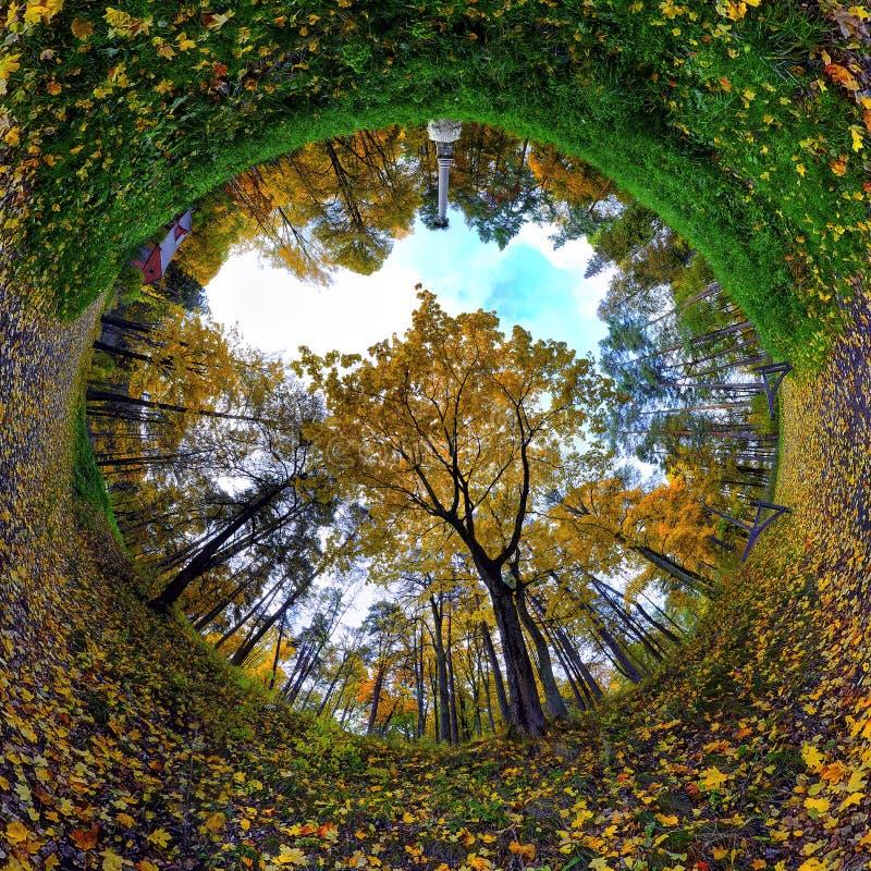 Herbst entspannen sich stockbilder