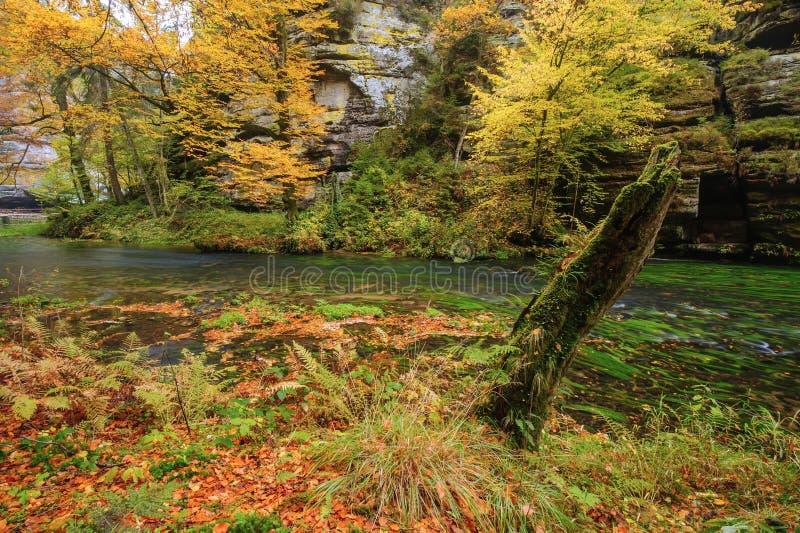 Herbst färbt Fluss lizenzfreie stockbilder