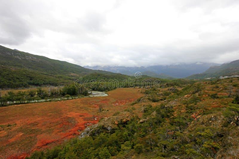 Herbst färbte Landschaft entlang der Straße zu Puerto Williams, Tierra Del Fuego, Chile stockbilder