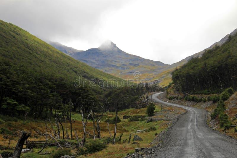 Herbst färbte Landschaft entlang der Straße zu Puerto Williams, Tierra Del Fuego, Chile stockbild