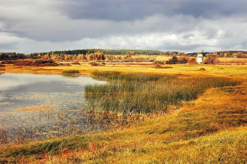 Herbst färbte Tallandschaftsherbstlandschaft in den Weinlesetönen lizenzfreies stockbild