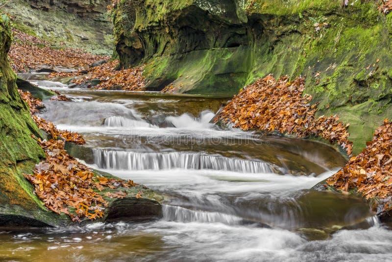 Herbst in Fall-Nebenfluss-Schlucht lizenzfreie stockfotografie