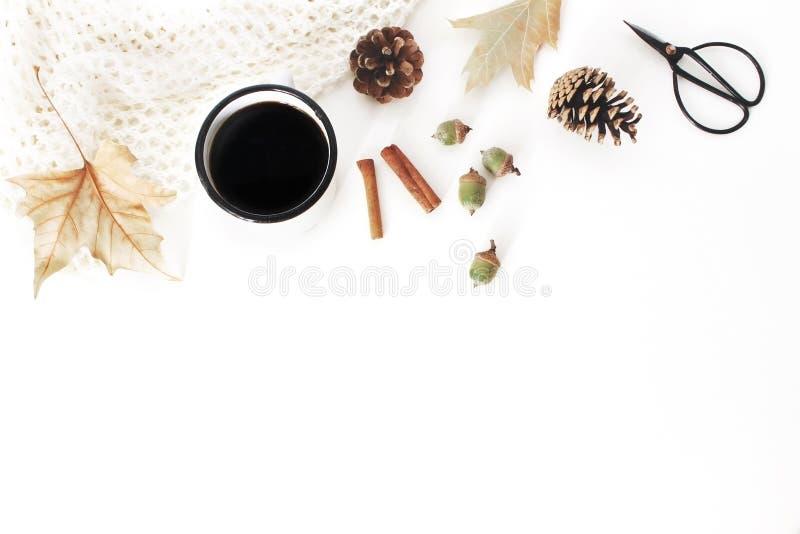 Herbst, Fallzusammensetzung Tasse Kaffee, gestrickte Decke, Herbstlaub, Zimtstangen, Kiefernkegel, Eicheln und Weinlese lizenzfreies stockfoto