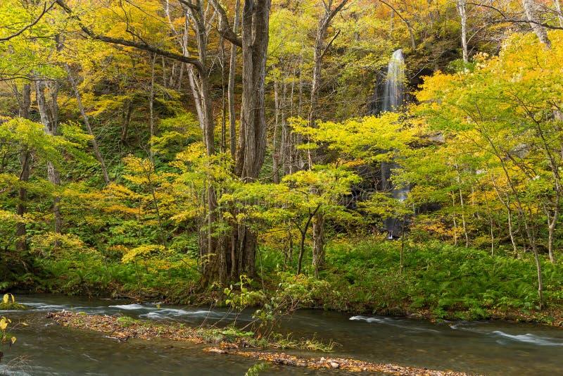 Herbst-Farben von Oirase Fluss stockfoto