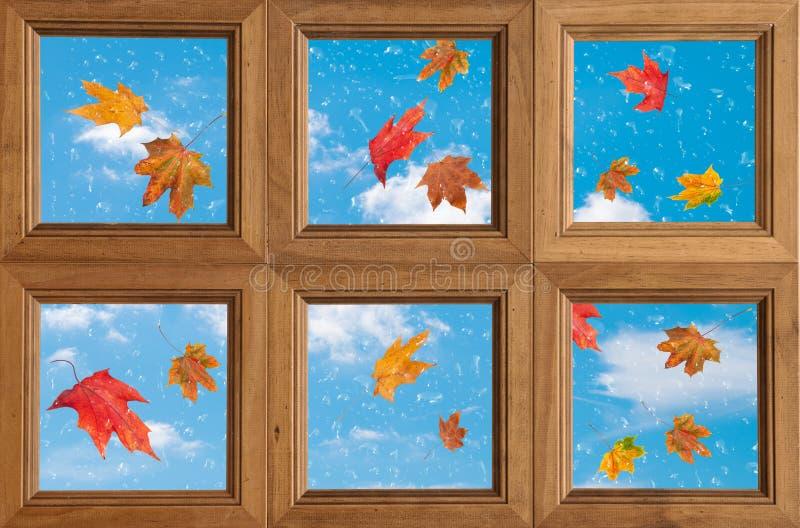 Download Herbst-Fenster stockfoto. Bild von d0, herbst, element - 26363690