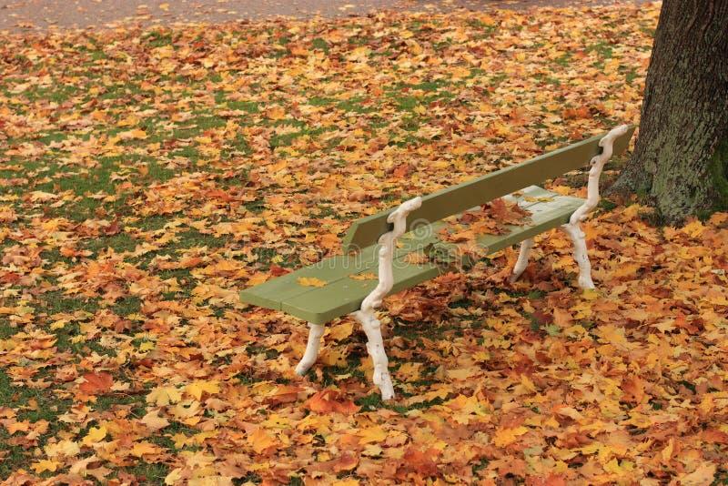 Herbst in Finnland stockbild