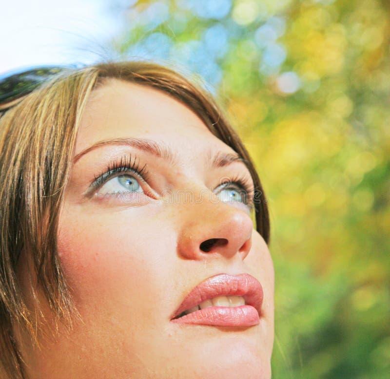 Herbst forestn Portrait lizenzfreie stockbilder
