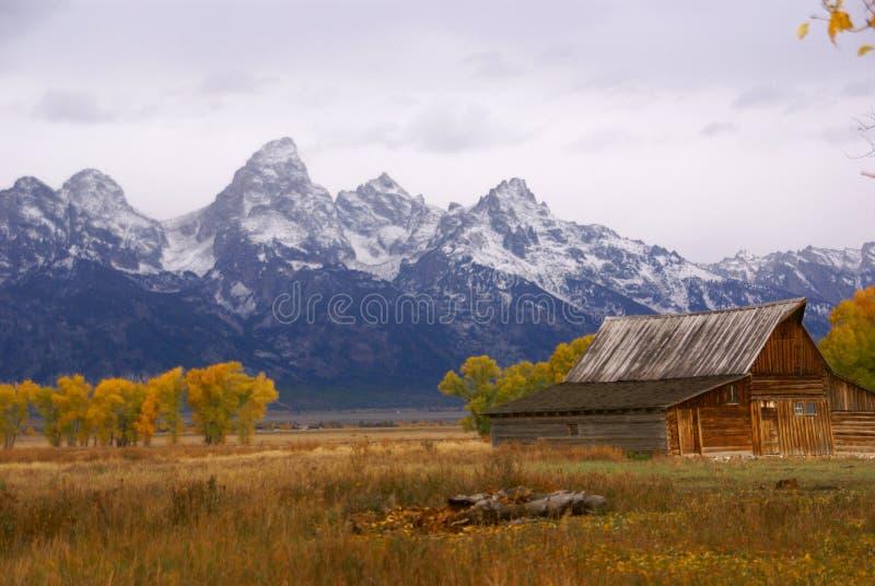 Herbst, gestaltete großartiges Tetons lizenzfreie stockfotos