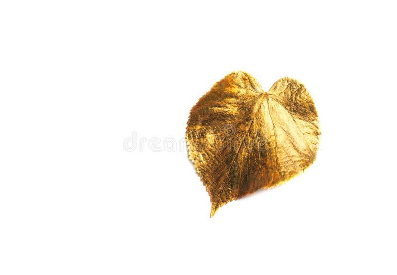 Herbst-goldenes Blatt mit Kopienraum stockfoto