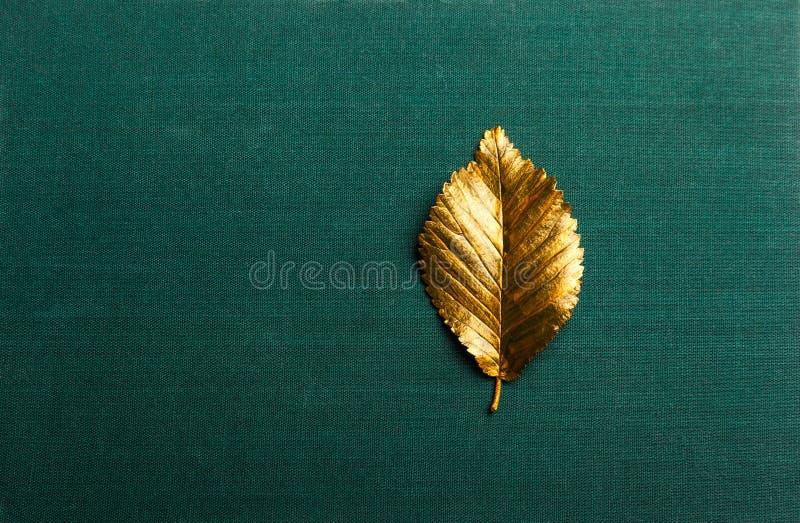 Herbst-goldenes Blatt mit Kopienraum stockbilder