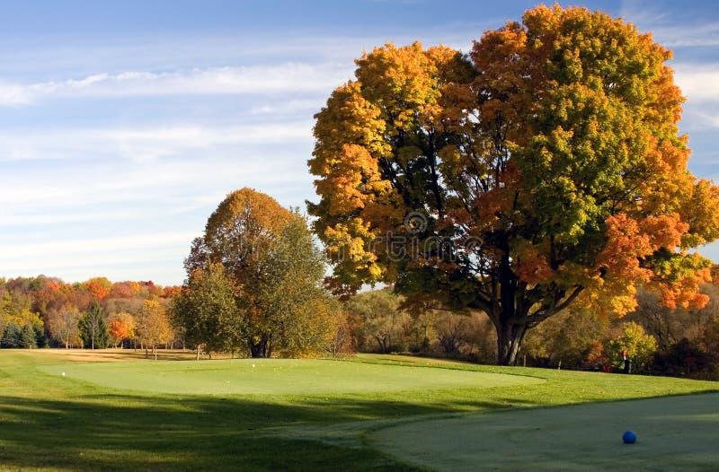 Herbst-Golf lizenzfreie stockfotos