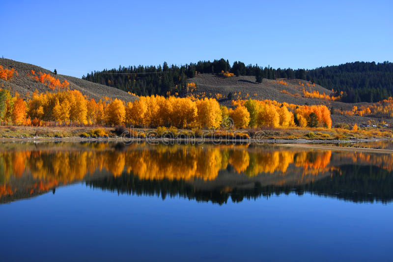 Herbst in großartigem Tetons stockfotografie