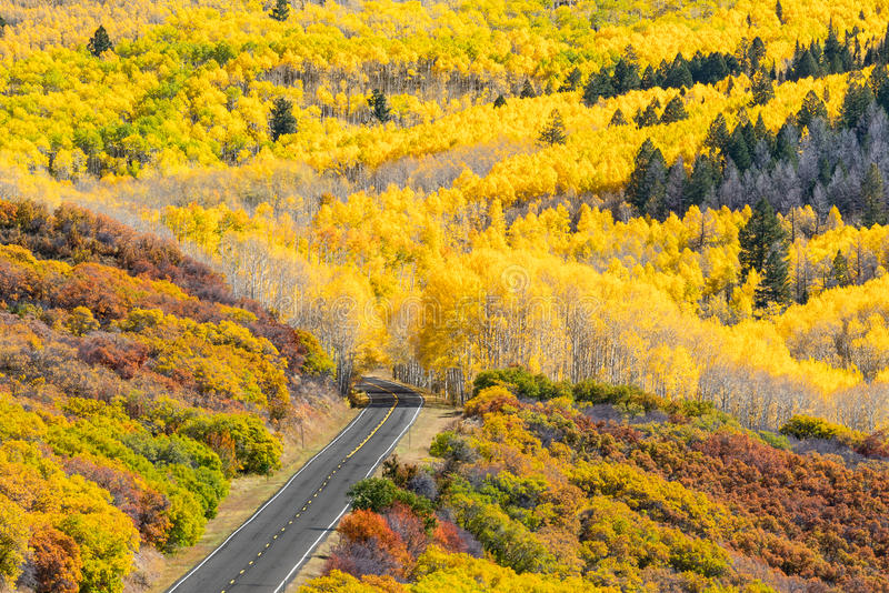 Herbst Gunnison Colorado stockfoto