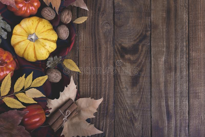 Herbst Halloween oder Danksagung backgrouund stockbilder