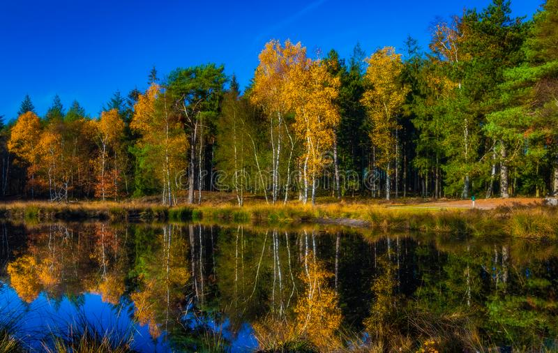 Herbst in Holland stockfoto
