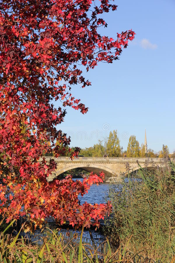Herbst in Hyde Park, London stockbilder