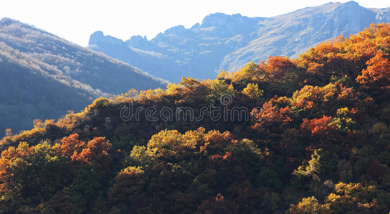 Herbst im Berg stockfotos