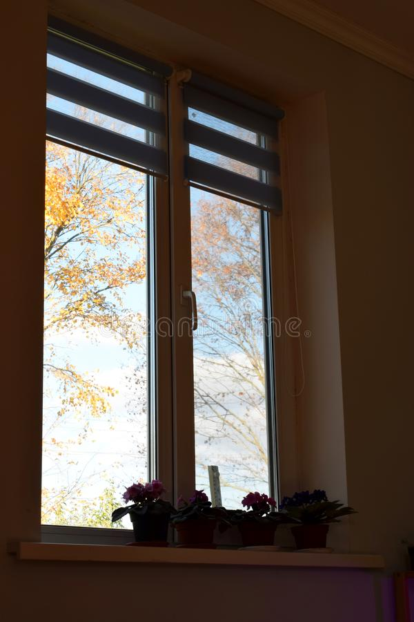 Herbst im Fenster stockbild
