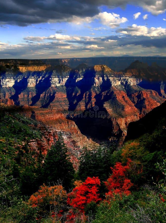 Herbst im Grand Canyon, Arizona, USA lizenzfreies stockbild